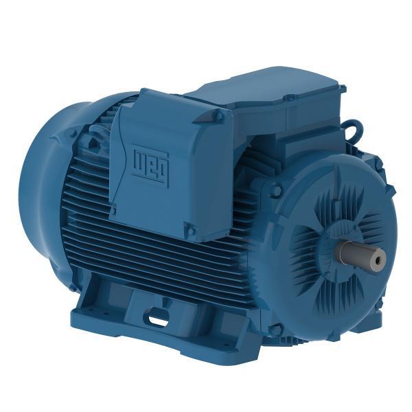 Động cơ điện hạ thế hiệu suất cao W22 Weg