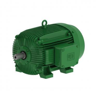 Động cơ điện hiệu suất cao W21 - IE4