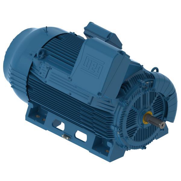 Động cơ điện hạ thế hiệu suất cao W50 Weg